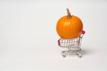 Orange pumpkin in a shopping cart on white background
