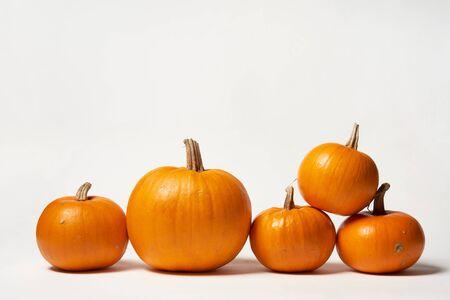 Orange halloween pumpkins standing in line on white background, front view