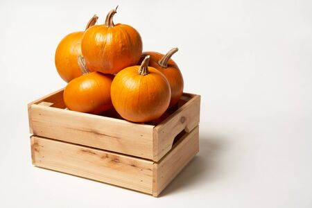 Ripe orange pumpkins in a wooden box on white background