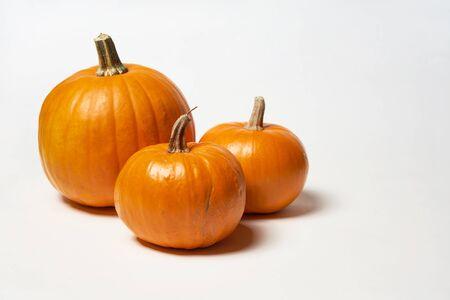 Orange halloween pumpkins standing on white background