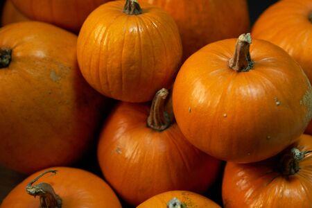 Heap of many orange pumpkins closeup, Halloween concept