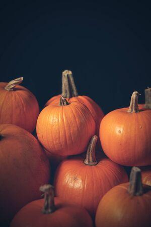 Heap of many orange pumpkins closeup, Halloween concept, tinted image Imagens