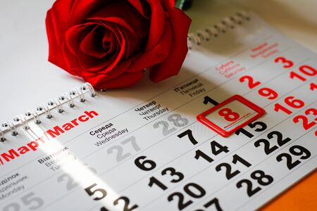 red rose lay on the calendar with the date of 8 march. Concept: International Women's Day Foto de archivo - 138047574