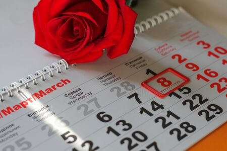 red rose lay on the calendar with the date of 8 march. Concept: International Women's Day Foto de archivo - 138047495