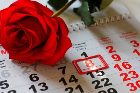 red rose lay on the calendar with the date of 8 march. Concept: International Women's Day Foto de archivo - 138047584