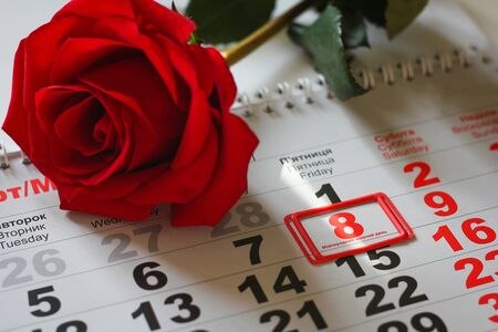red rose lay on the calendar with the date of 8 march. Concept: International Women's Day Foto de archivo - 138047743