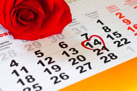 red rose lay on the calendar with the date of February 14 Valentine's day Foto de archivo - 138047660