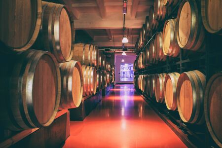 Oak barrels with wine in dark cellar. Modern production of wine with the observance of age-old traditions. Noises and large grain - stylization under the film. Soft focus.