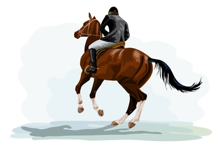 show jumping: rider on horse riding tournament
