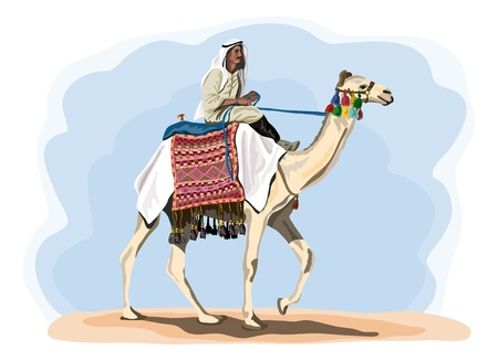 egyptian camel rider in traditional costume Stock Illustratie