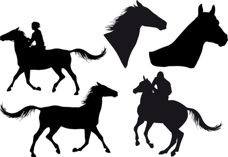 five silhouettes of horses, horse heads and riders Vector