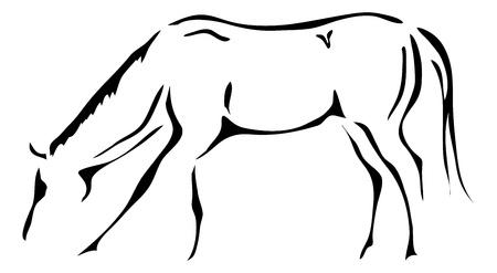 cavallo che salta: contorni in bianco e nero di cavallo