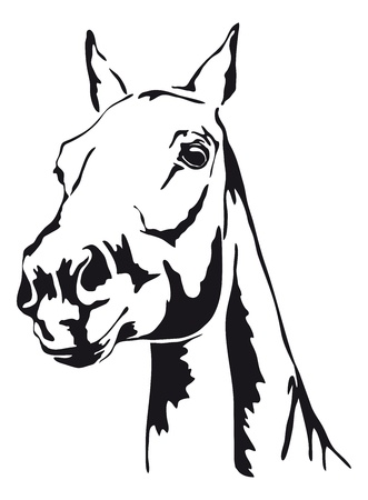 black and white outlines of horse Stock Illustratie