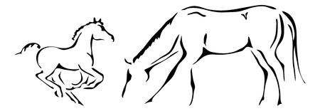 foal: black and white outlines of galloping foal and mare Illustration