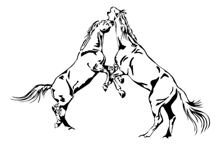 fighting horses - black and white outline