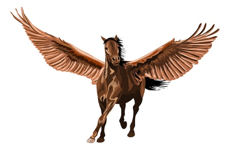 brown pegasus horse galloping with open wings.  Vector