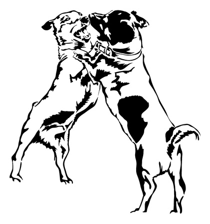 jack russel: two playing Jack Russel Terrier Illustration