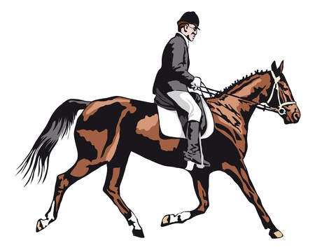stirrup: trotting horse with rider on tournament