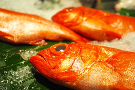 Close up of red snapper fish on ice in a market. Banco de Imagens