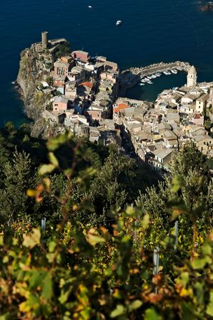 Panorama of the village of Vernazza and the vineyards of the Shiacchetr? ? vineyard in Liguria.