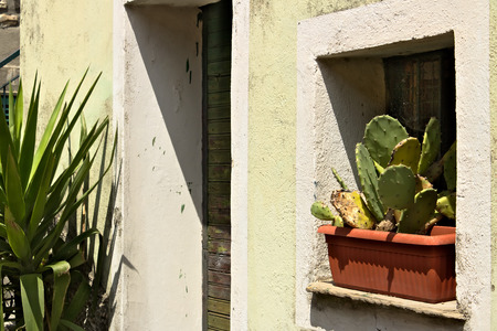 A detail of a facade of a Mediterranean house painted yellow-green Reklamní fotografie