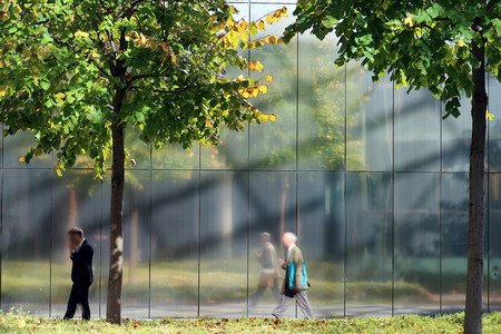 Trees in the city. A steel wall is the background of green trees.A businessman calls while walking.