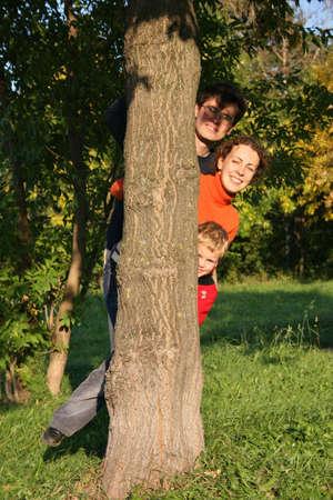 lurk: Famiglia di tre nascondere albero  Archivio Fotografico