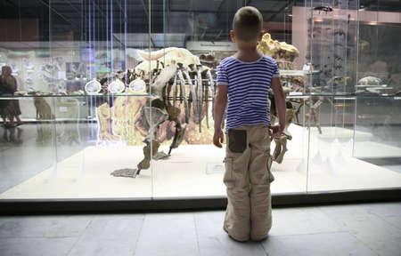 alberta: boy and dinosaur`s skeleton in museum