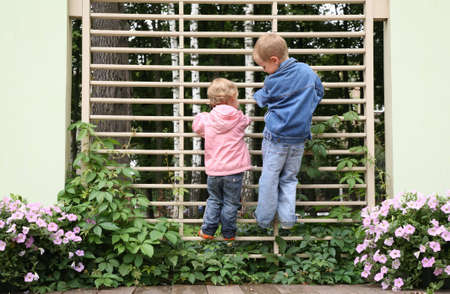 climbed: children climbed up to the lattice in the park Stock Photo