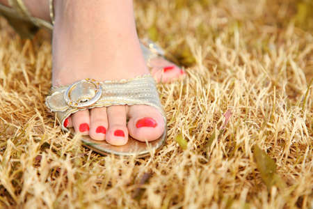 wearing sandals: female foot on the grass