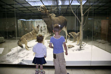 children in the natural museum