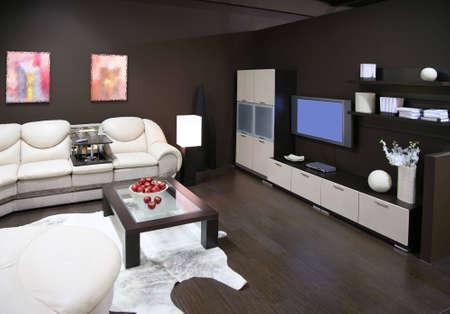 livingroom interior 3 photo