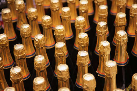 bottles of champagne Stock Photo - 3012293