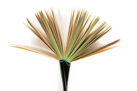 book opening as fan Stock Photo - 3019408