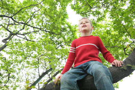 red jeans: boy sits on tree