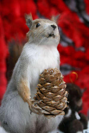 scarecrow of squirrel with cone photo