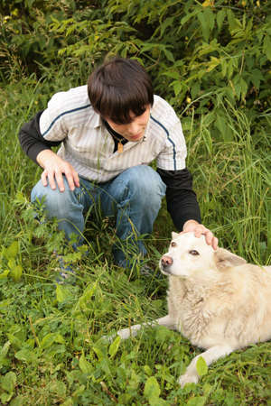 caresses: Fellow caresses by hand dog in  grass