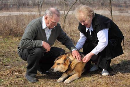 caresses: Elderly pair caresses a dog