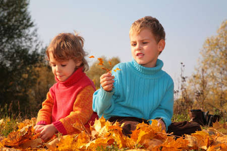 Two children sit on fallen maple leaves photo
