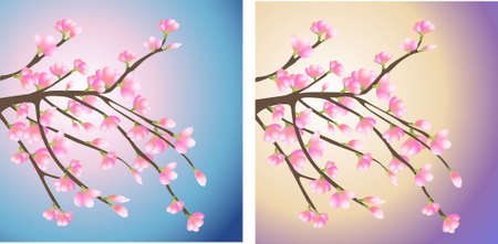 branch with pink flowers vector Vector