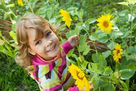 pretty Little Girl keeps in hand sunflower in garden  photo