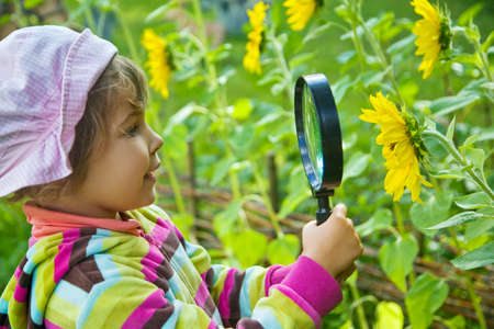 pretty Little Girl with magnifying glass looks at flower photo