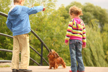Children with dachshund outdoor photo
