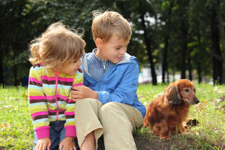 Children with dachshund sit on grass photo