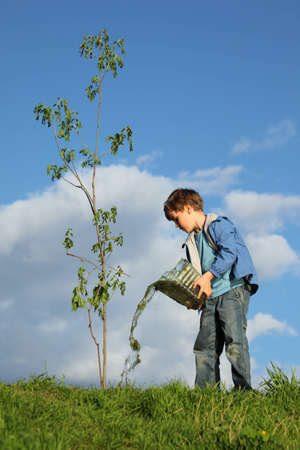 boy pours on seedling of tree by water Stock Photo - 7831514