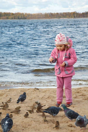 animal feed: Little girl plays beach in autumn day. She feeds sparrows and pigeons. Stock Photo