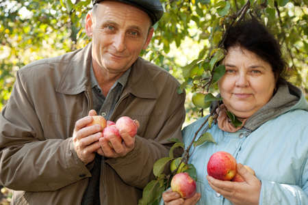 Middleaged man and woman stand under tree and hold apples in hands photo