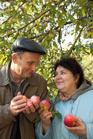 Middleaged man and woman stand under apple-tree with red apples photo