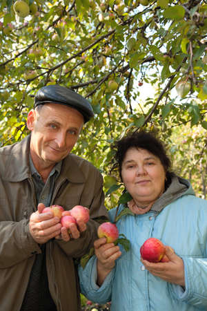 Middleaged man and woman stand under tree, hold apples and smile photo