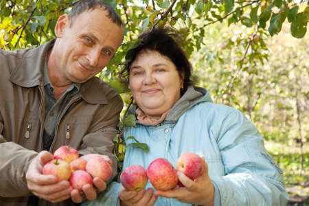 Middleaged man and woman stretch out their hands with apples photo